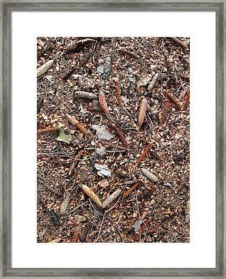 Woodland Cover Framed Print