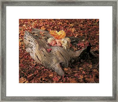 Woodland Fairy Framed Print by Anne Geddes