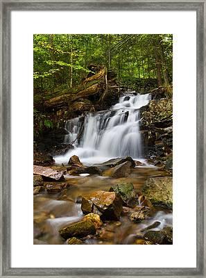 Woodland Falls Framed Print by Mike Farslow