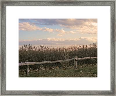Woodland Fences - Marshes Of Fairfield County Ct Framed Print