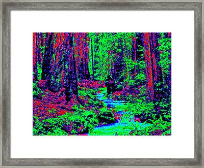Woodland Forest D3 Framed Print by Modified Image