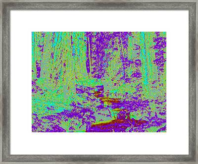 Woodland Forest D4 Framed Print by Modified Image