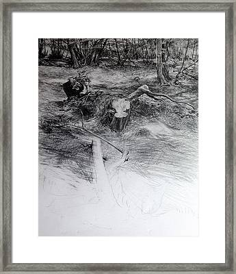 Woodland Framed Print by Harry Robertson