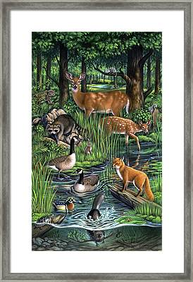 Woodland Framed Print
