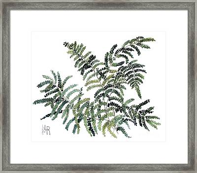 Woodland Maiden Fern Framed Print