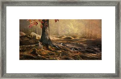 Framed Print featuring the photograph Woodland Mist by Robin-Lee Vieira
