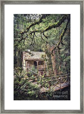 Woodland Mysteries Framed Print by Evelina Kremsdorf