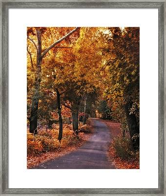 Woodland Path Framed Print by Jessica Jenney