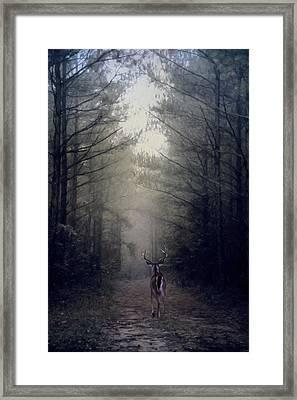 Woodland Retreat Framed Print