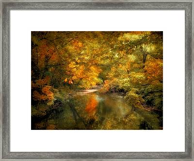 Woodland River Lights Framed Print