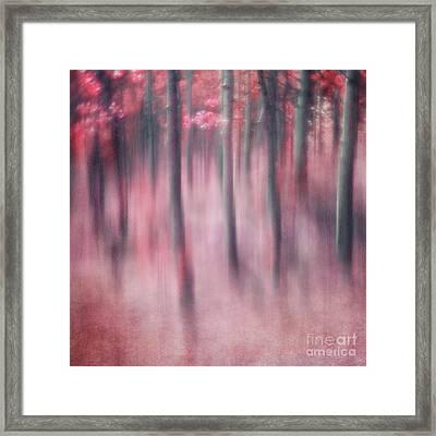 Woodland Sanctuary Framed Print by Priska Wettstein