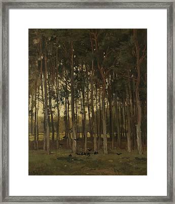 Woodland Scene Framed Print by Theophile de Bock