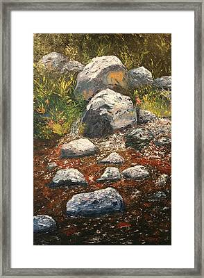 Woodland Stream Framed Print by Robert Tower