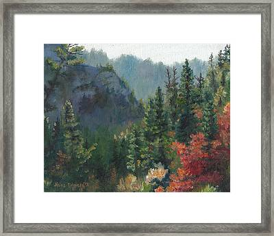 Woodland Wonder Framed Print
