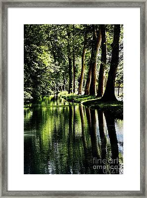 Framed Print featuring the photograph Woodoh by Cazyk Photography