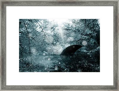 Woods 2 Framed Print