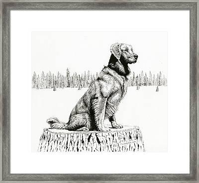 Woods Dog Framed Print