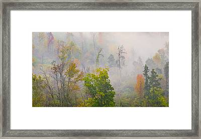 Framed Print featuring the photograph Woods From Afar by Wanda Krack