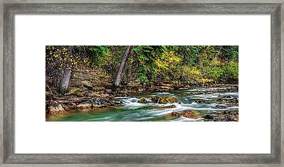 Woods In The Fall Framed Print by Andrew Soundarajan