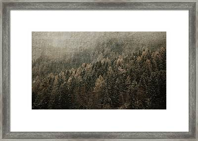 Woods In Winter Framed Print by Vittorio Chiampan