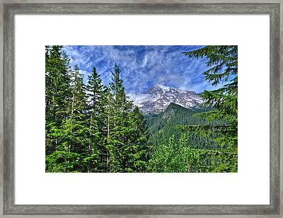 Woods Surrounding Mt. Rainier Framed Print