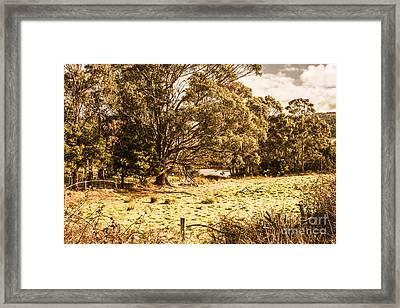 Woodstock Tasmania Framed Print
