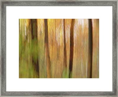 Woodsy Framed Print