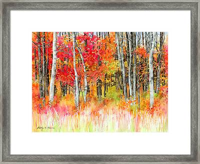 Woodsy Forest Framed Print by Hailey E Herrera