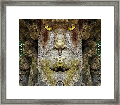 Woody 109 Framed Print by Rick Mosher