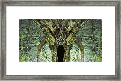 Woody 113 Framed Print by Rick Mosher