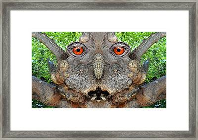 Woody 115 Framed Print by Rick Mosher