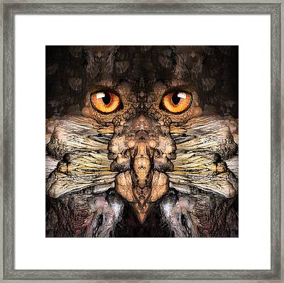Woody 120 Framed Print by Rick Mosher