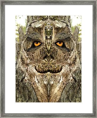 Woody 122 Framed Print by Rick Mosher