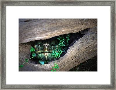 Woody 125 In The Wild Framed Print by Rick Mosher