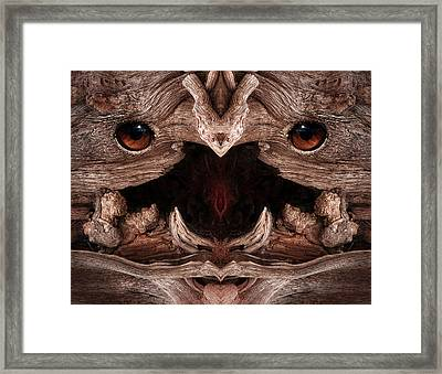 Woody 129 Framed Print by Rick Mosher