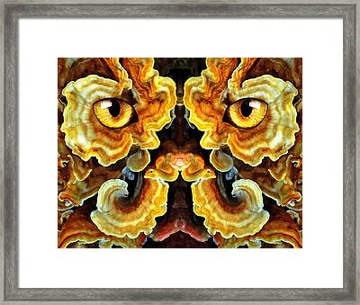 Woody 130a Framed Print by Rick Mosher