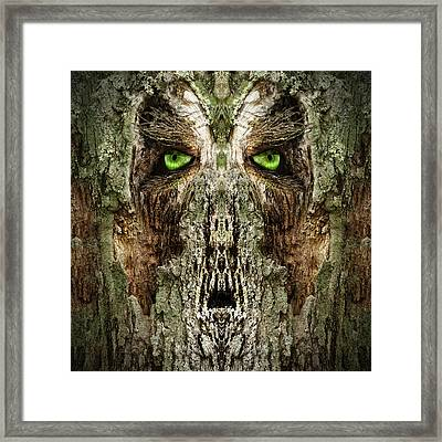 Woody 133 Framed Print by Rick Mosher