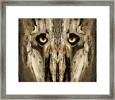 Woody 134 Framed Print by Rick Mosher