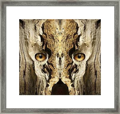 Woody 139 Framed Print by Rick Mosher