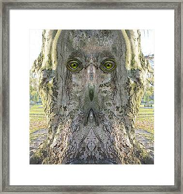 Woody 140 Framed Print by Rick Mosher