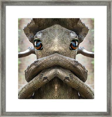 Woody 141 Framed Print by Rick Mosher