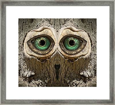 Woody 145 Framed Print by Rick Mosher