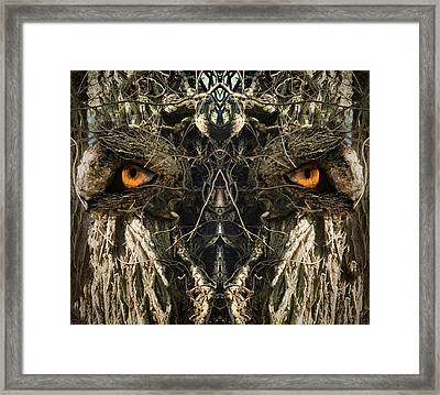 Woody 149 Framed Print by Rick Mosher