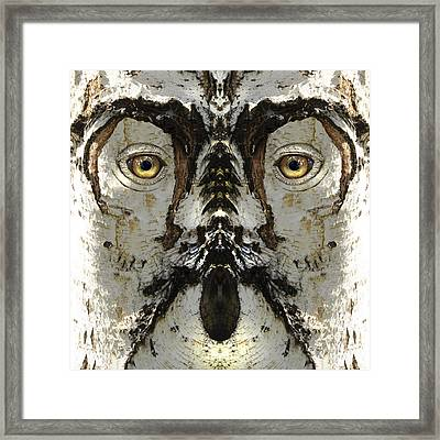 Woody 159 Framed Print by Rick Mosher