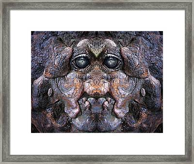 Woody 76 Framed Print by Rick Mosher