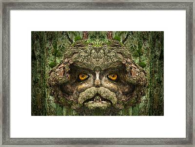 Woody 92 Framed Print by Rick Mosher