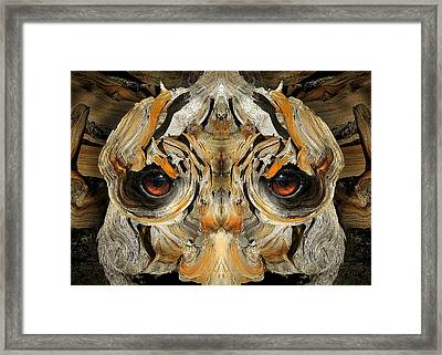 Woody 96 Framed Print by Rick Mosher