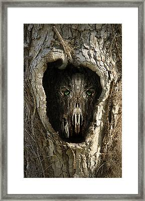 Woody 99 In The Wild Framed Print by Rick Mosher