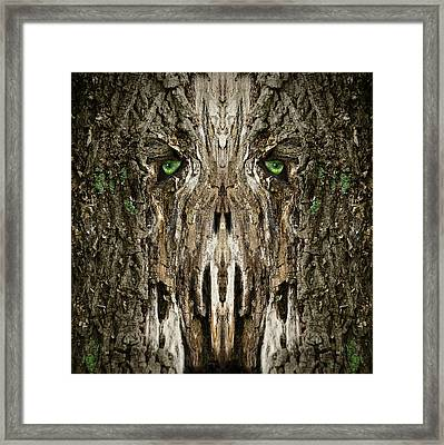 Woody 99 Framed Print by Rick Mosher