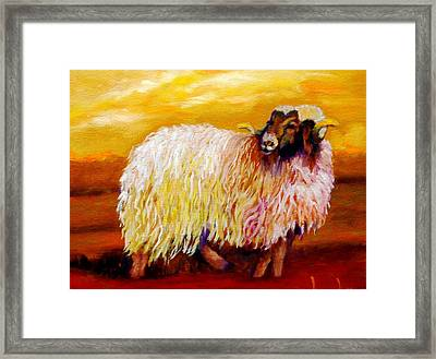 Woolly Framed Print by Marie Hamby